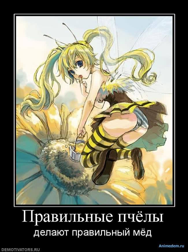 http://animedem.ru/uploads/posts/2010-11/1289325086_949721_pravilnyie-pchyolyi.jpg