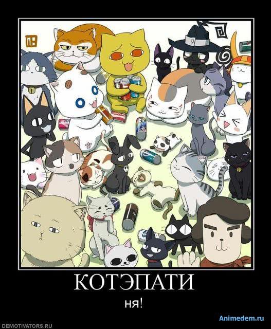http://animedem.ru/uploads/posts/2010-11/1289894772_7ab5d43bec36.jpg