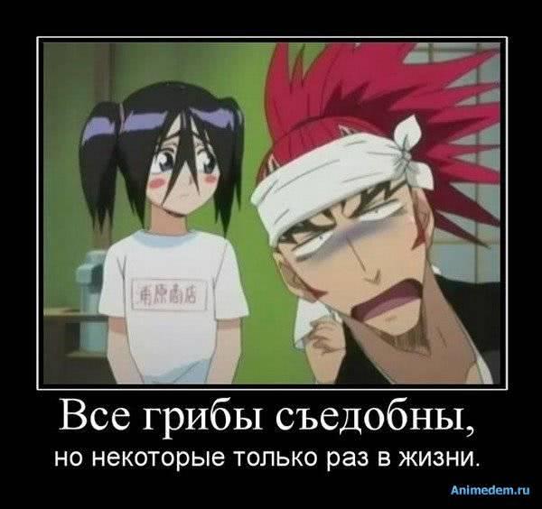 http://animedem.ru/uploads/posts/2011-01/1294397153_1291603883_285c44daa532.jpg