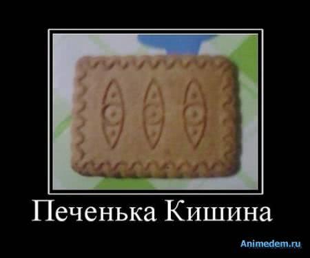Печенька кишина